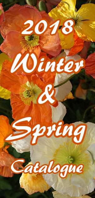 NuLeaf Nursery Winter and Spring Garden Plants 2018 Catalogue