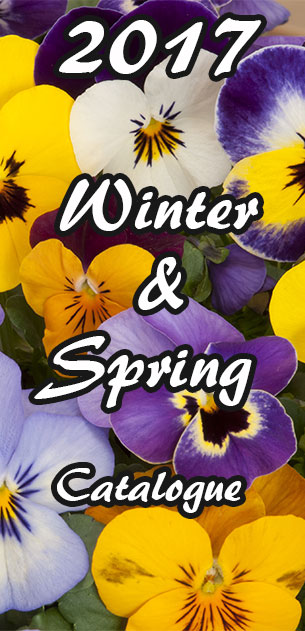 NuLeaf Nursery Winter and Spring 2017 Catalogue