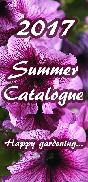 NuLeaf Nursery Summer Garden Plants 2017 Catalogue